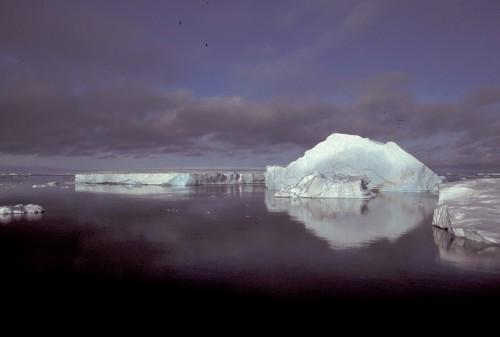 ラルセンBの小氷山