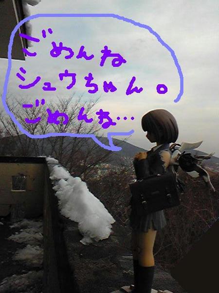Image295.JPG