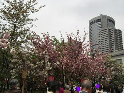 201046.JPG