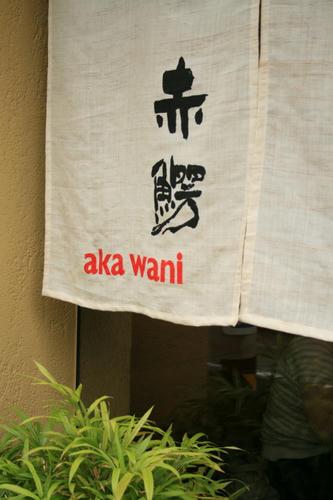 akawani11.jpg