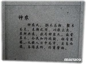 20110319-4.jpg
