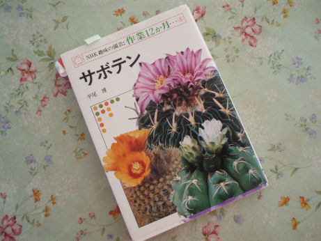 NHK 趣味の園芸:作業12ヶ月・・・サボテン