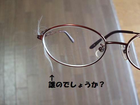 P5090043.JPG