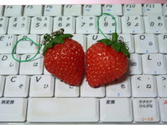 blog20111018_1
