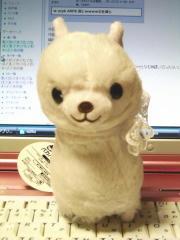 blog20111105_1