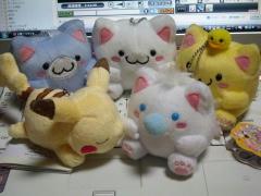 blog20120125_1