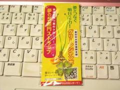 blog20120225_1