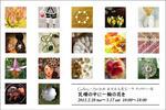 gallerysin_1202.jpg