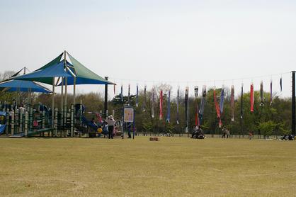 IMGP7335-1.jpg