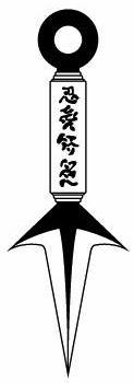 Organisasi Wildnight Hiraishin-kunai-1