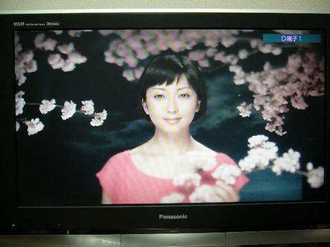 「サクラビト」PV映像1
