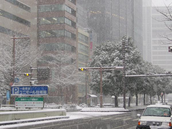 都心部の大雪2