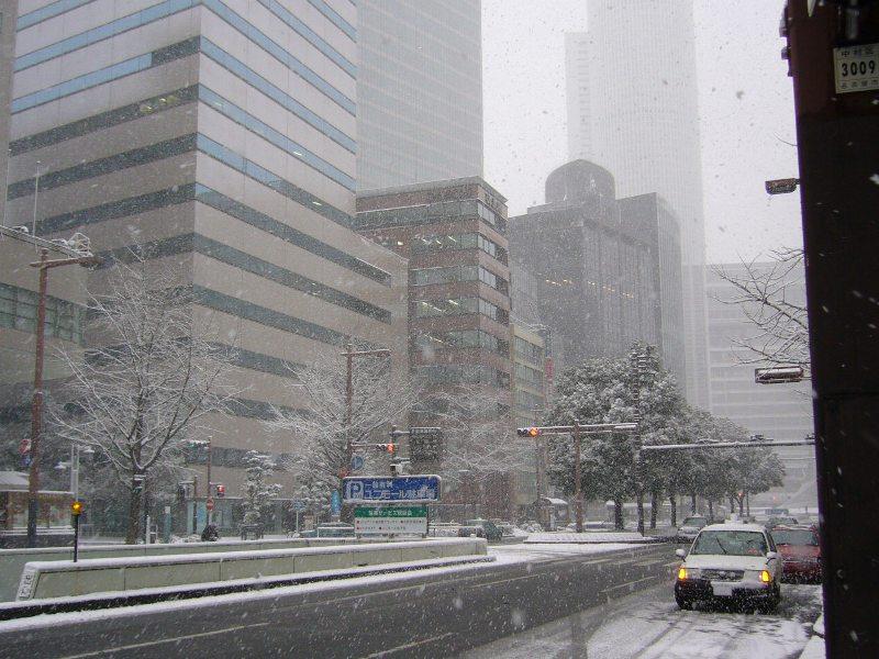 都心部の大雪3