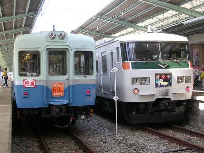 JR185系と伊豆急行100系