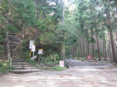 登山道と林道の分岐