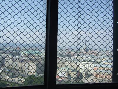 ウィーン市を望む