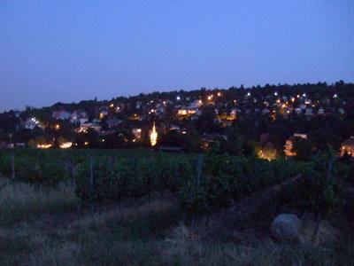 丘の上から見る景色