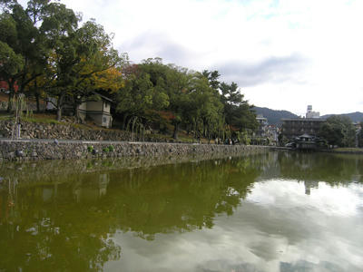 猿沢の池1