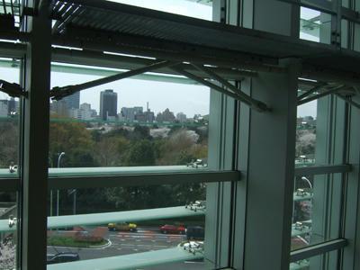 窓から見た風景