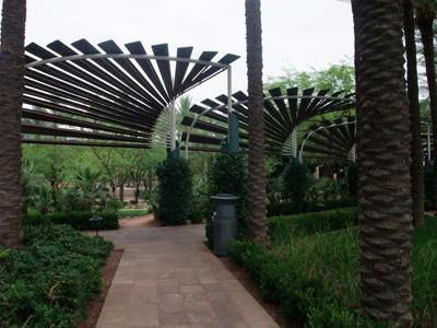 アリゾナセンター1