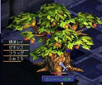 kunoki1015