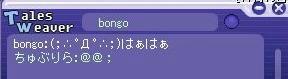bongo1_1115