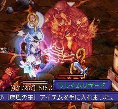 tokage5_1117