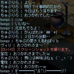 bongo2_1228