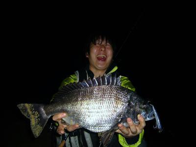 釣果 黒鯛 チヌ