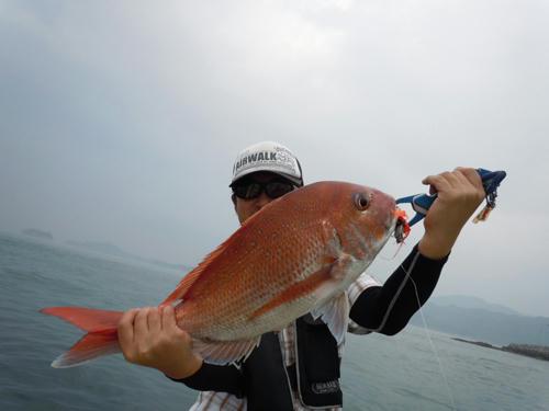 広島 鯛ラバ 真鯛