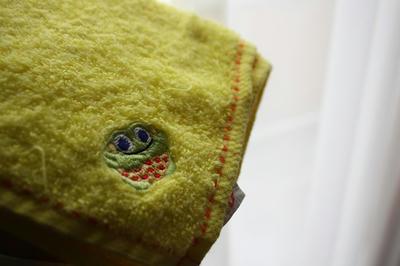 sassy_towel2.jpg