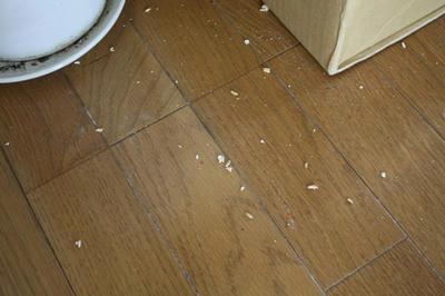 dirty_floor.jpg