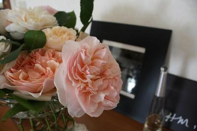 roses_hm.jpg