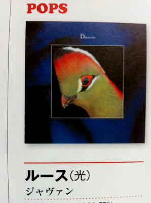 luz_book.jpg