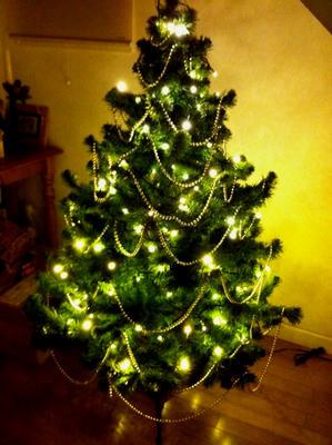 xmas_tree_half.JPG