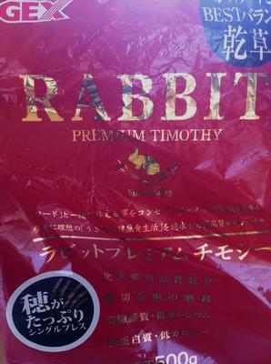 glasses_rabbit.jpg