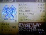 091010_061855.JPG
