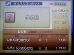 091028_051136.JPG