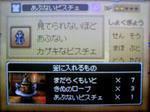 091029_183008.JPG