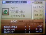 100730_050110.JPG