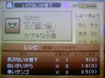 100730_050344.JPG