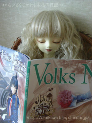 VolksNews44