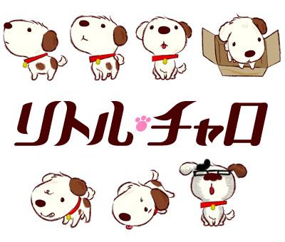 元 わらび☆かんがるー子のブログ リトル・チャロがかわいい件