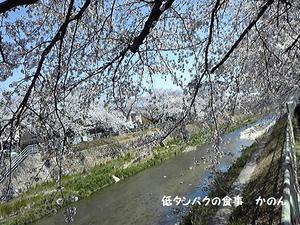 香流川緑道
