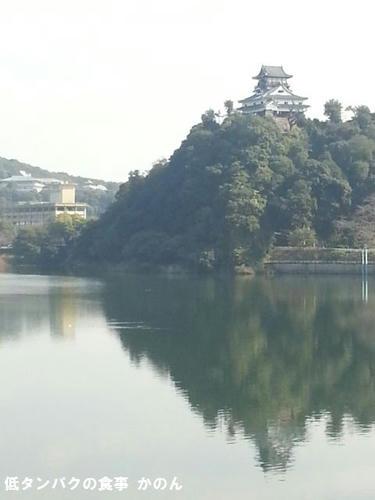 ライン橋から見る犬山城
