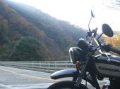 kouyou_bike.jpg
