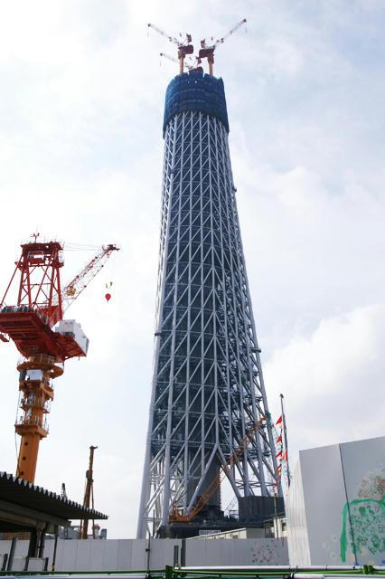 20100131東京スカイツリー1