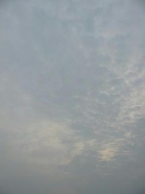 7月7日朝5時半ごろの空