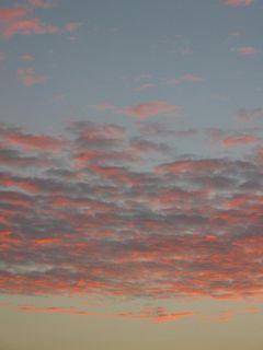11月5日朝5時50分ごろの空04