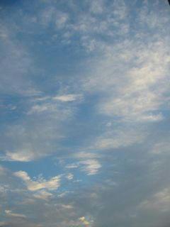 11月26日朝6時半ごろの空